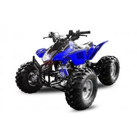 Grizzly 3G8 125cc
